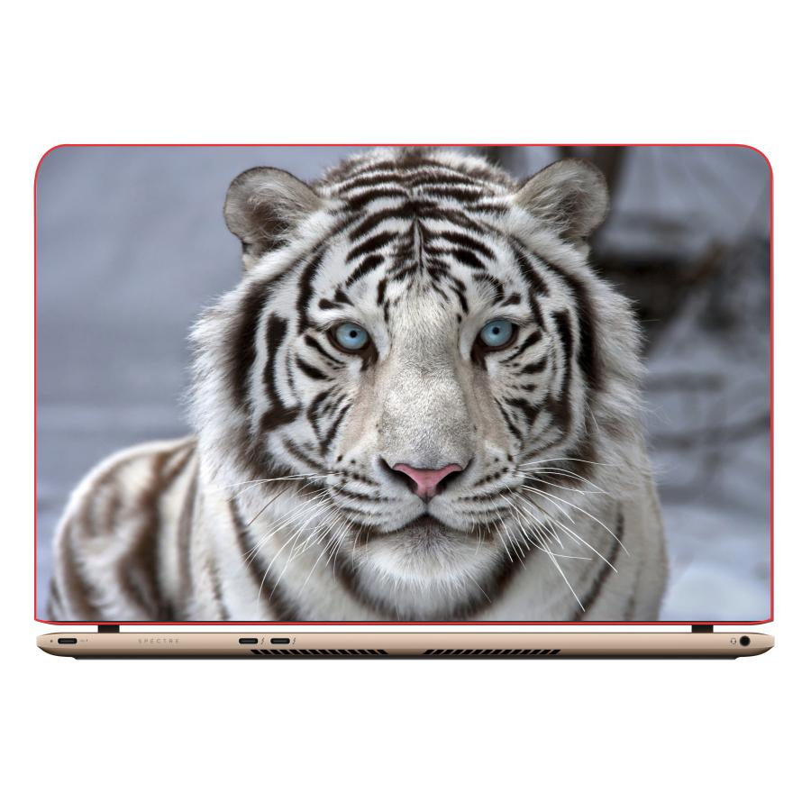 Miếng Dán Trang Trí Decal Laptop Animal DCLTDV 282