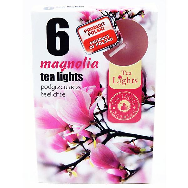 Hộp 6 nến thơm tinh dầu Tealight Admit Magnolia QT026077 - hoa mộc lan