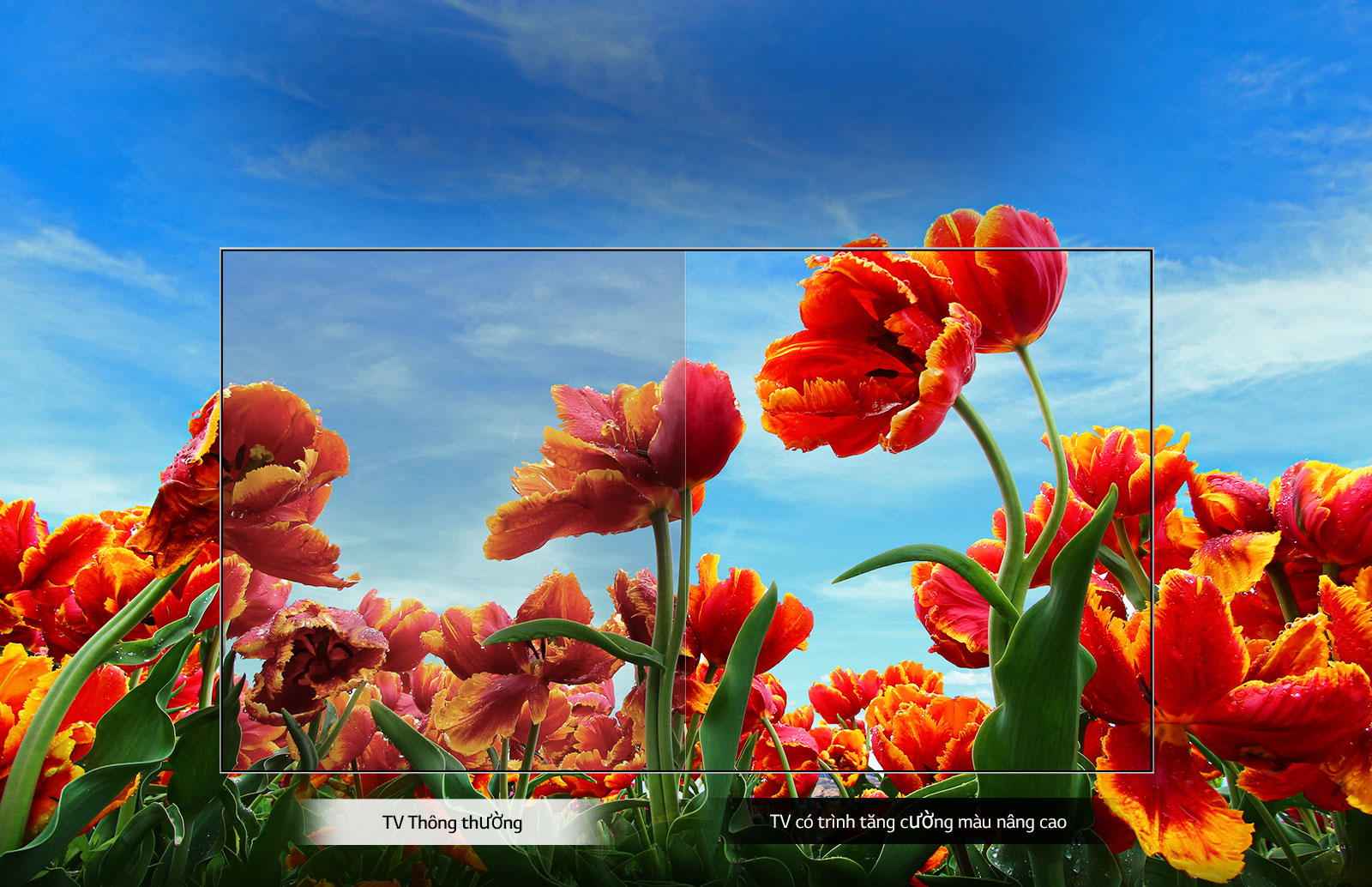 Smart Tivi LG HD 32 inch 32LM630BPTB