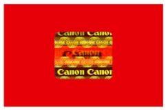 Mực Máy In CANON PFI-50 C Xanh (80ml)