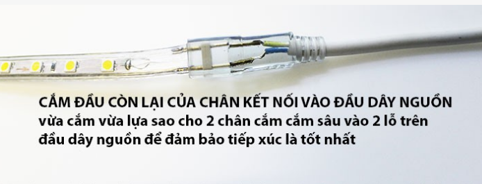 csclightingvietnam