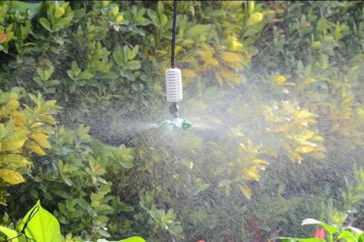 Bộ phun sương tưới cây kèm máy bơm nước tăng áp 2