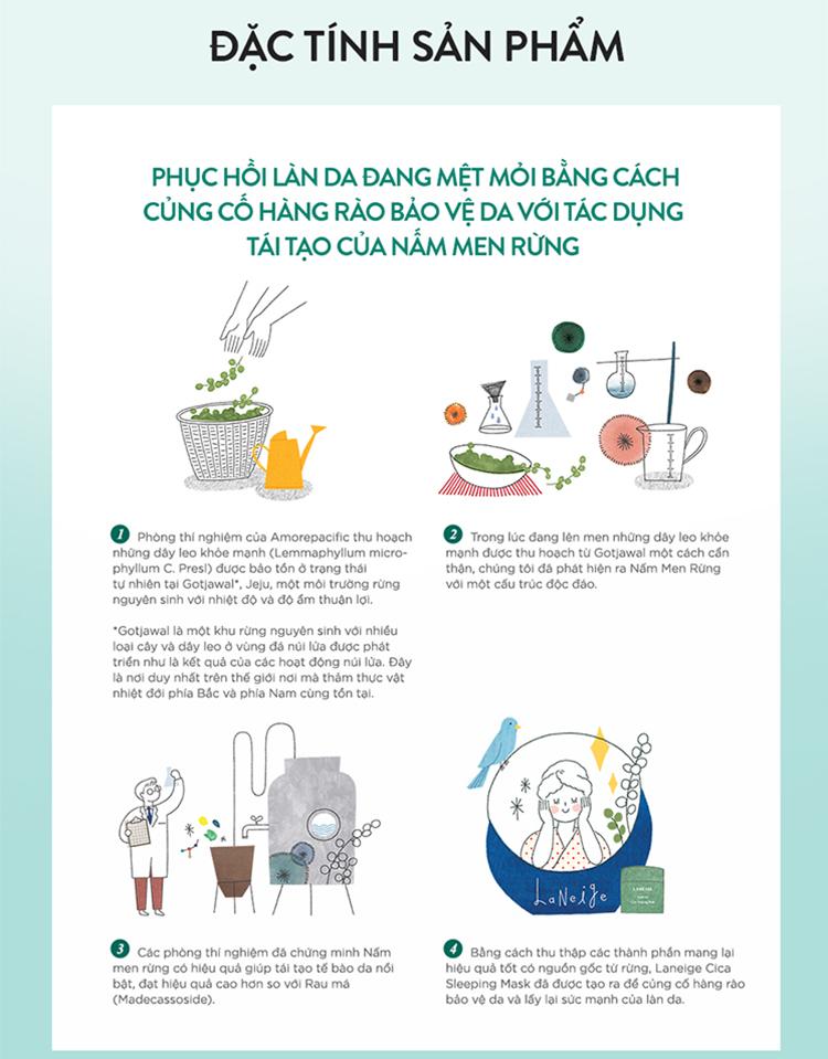 Mặt Nạ Ngủ Giúp Phục Hồi Và Tăng Cường Hàng Rào Bảo Vệ Da Laneige Cica Sleeping Mask 60Ml