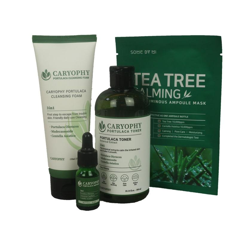 Bộ 3 Sản phẩm dưỡng da trị mụn Caryophy- Cleansing Foam, Toner và Serum - caryophy.trio