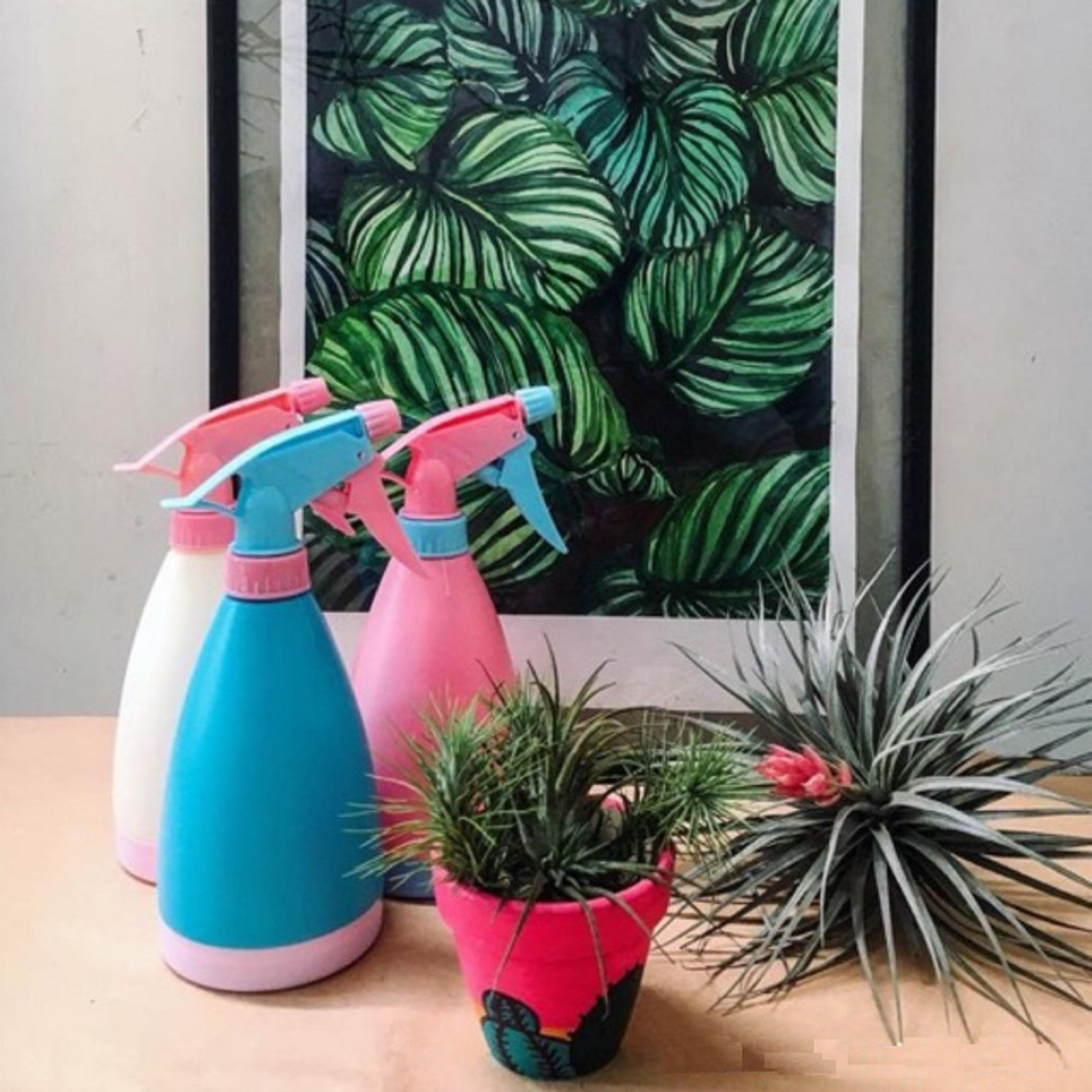 Bình xịt nước mini tiện dụng đa năng thích hợp dùng chăm sóc hoa ...