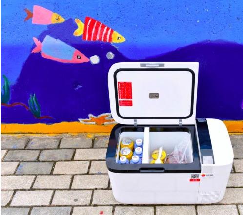 Tủ Lạnh Mini Indelb T20