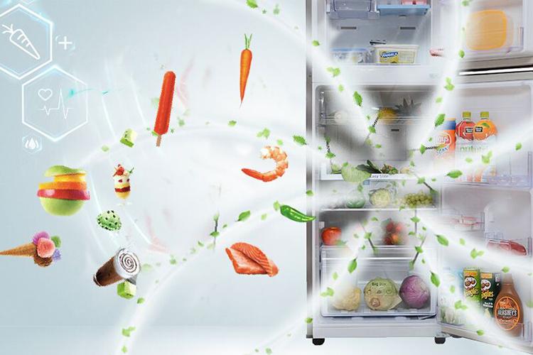 Tủ lạnh Samsung Inverter 234 lít RT22FARBDSA