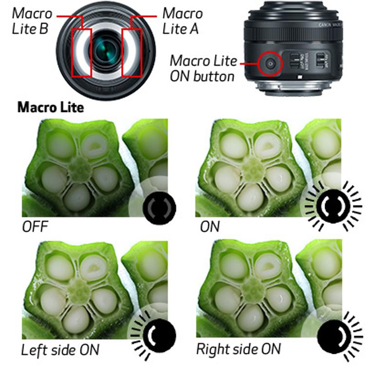 Lens Canon EF-S 35mm f/2.8 Macro IS STM - Hàng Chính Hãng | Tiki.vn