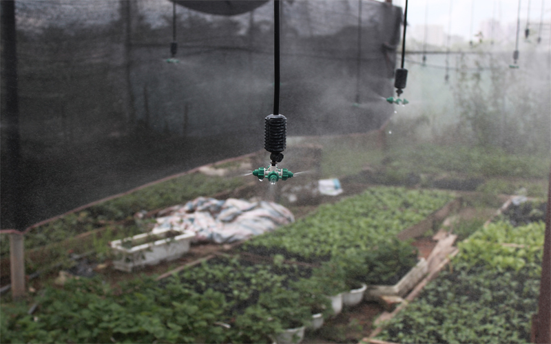 Bộ phun sương tưới cây kèm máy bơm nước tăng áp 1