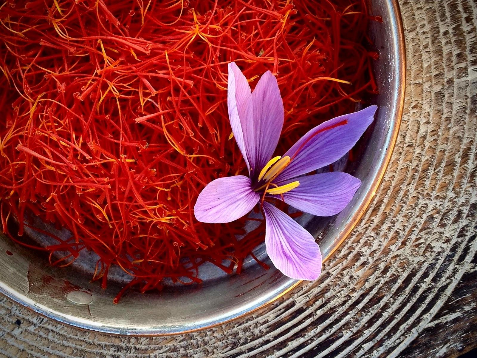 Nhụy hoa nghệ tây Saffron Gohar dòng Negin