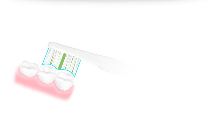 Bàn Chải Đánh Răng Điện PROORAL 2061 + 2 Đầu - Trắng