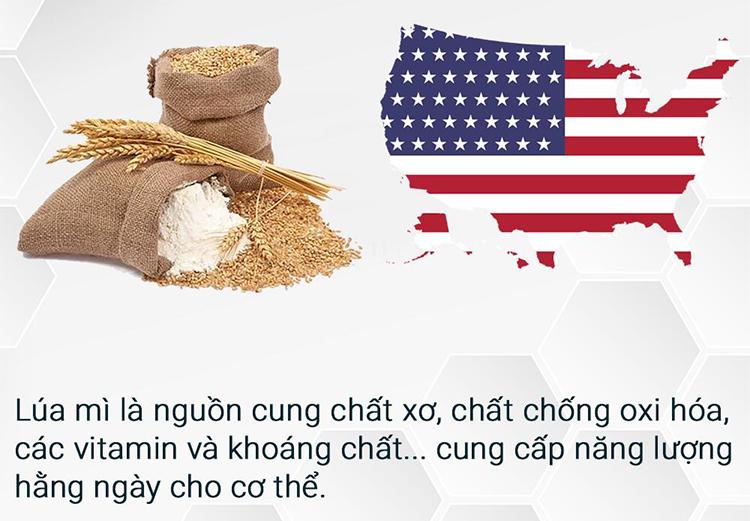 Bánh Wafer Hạt Chia Mr Côôp Lai Phú(Lon 170g)
